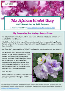 The African Violet Way